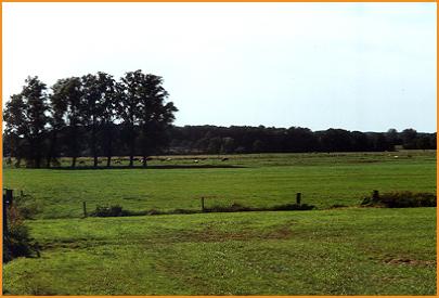 Fotoalbum-Minicamping-de-Dinkelweide-002
